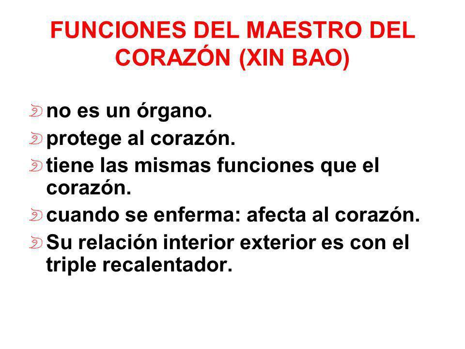 FUNCIONES DEL MAESTRO DEL CORAZÓN (XIN BAO)