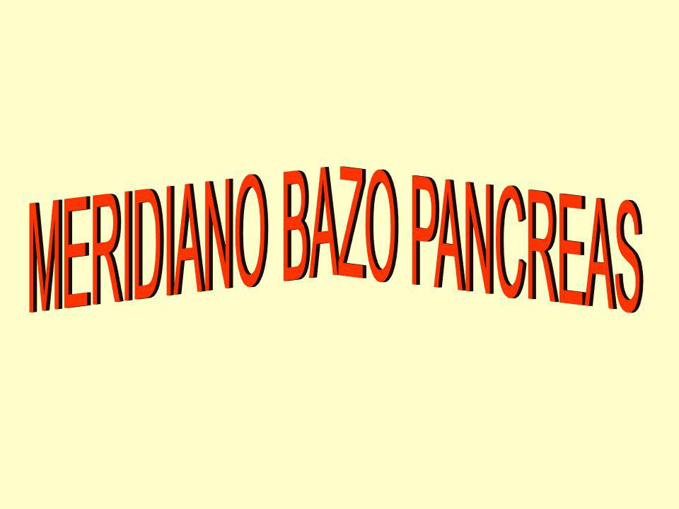 MERIDIANO BAZO PANCREAS