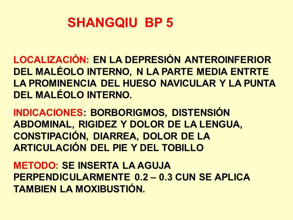 SHANGQIU BP 5