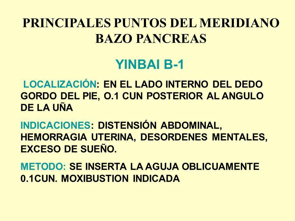 PRINCIPALES PUNTOS DEL MERIDIANO BAZO PANCREAS