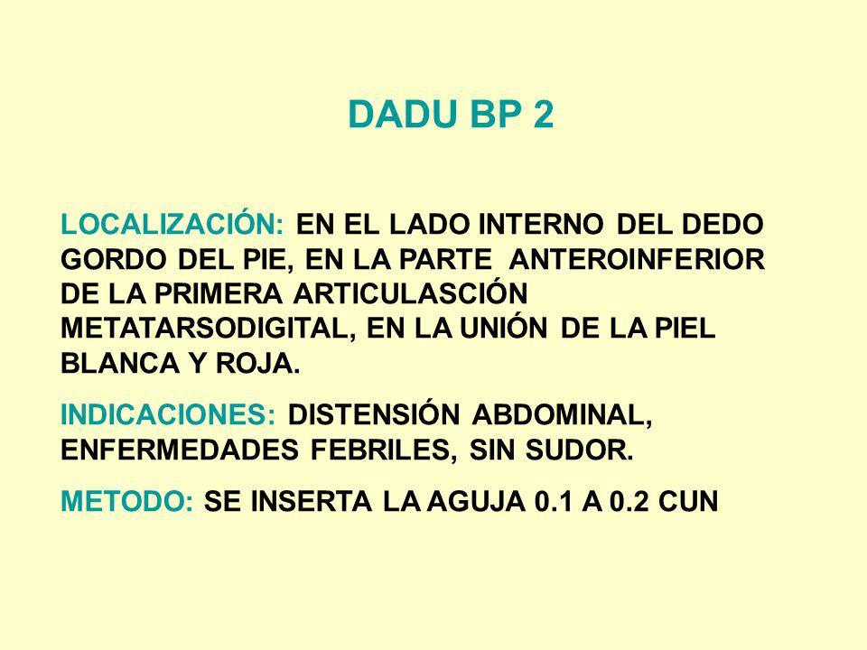 DADU BP 2