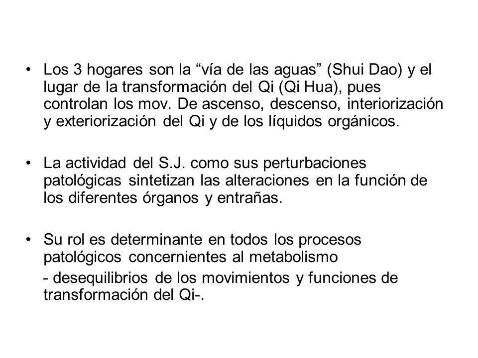 Los 3 hogares son la vía de las aguas (Shui Dao) y el lugar de la transformación del Qi (Qi Hua), pues controlan los mov. De ascenso, descenso, interiorización y exteriorización del Qi y de los líquidos orgánicos.