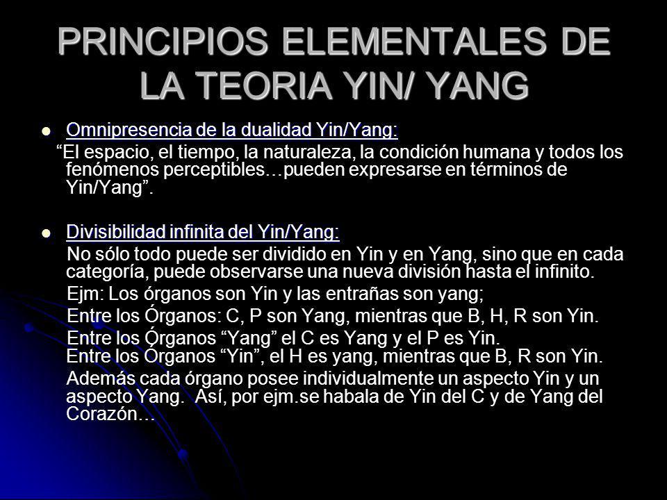 PRINCIPIOS ELEMENTALES DE LA TEORIA YIN/ YANG