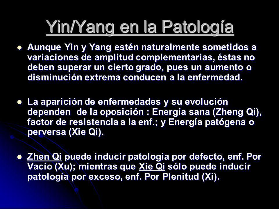 Yin/Yang en la Patología