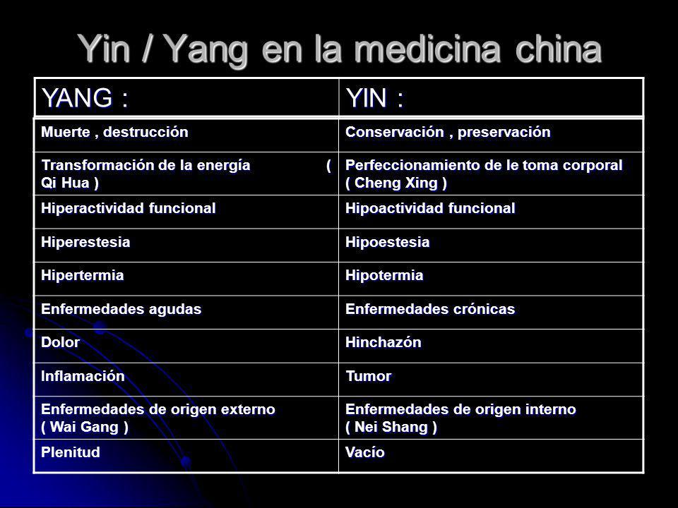 Yin / Yang en la medicina china