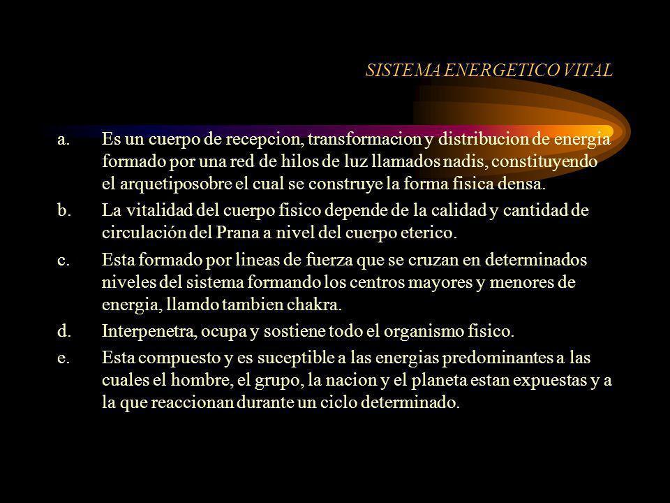 SISTEMA ENERGETICO VITAL