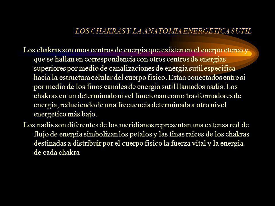 LOS CHAKRAS Y LA ANATOMIA ENERGETICA SUTIL