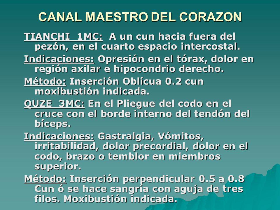 CANAL MAESTRO DEL CORAZON