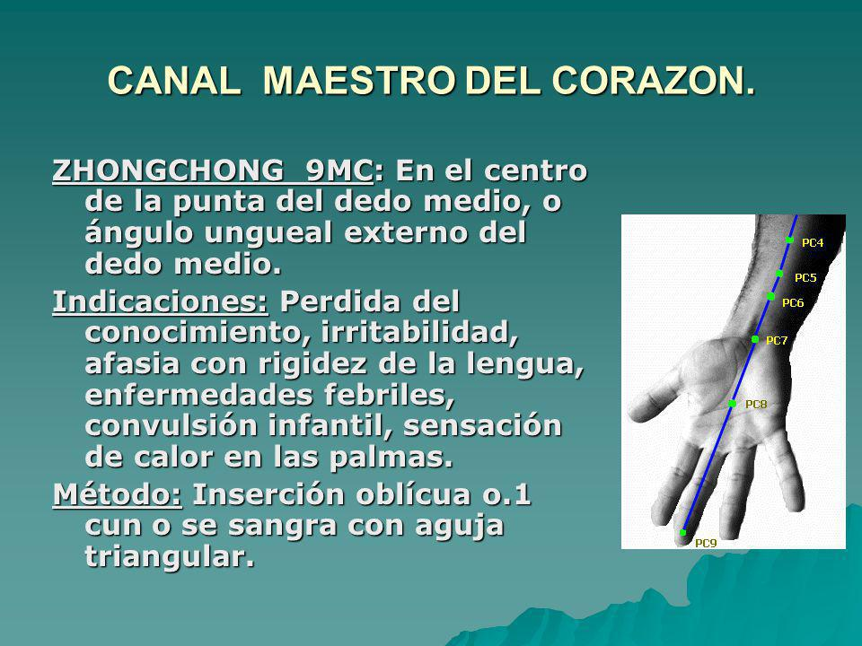 CANAL MAESTRO DEL CORAZON.
