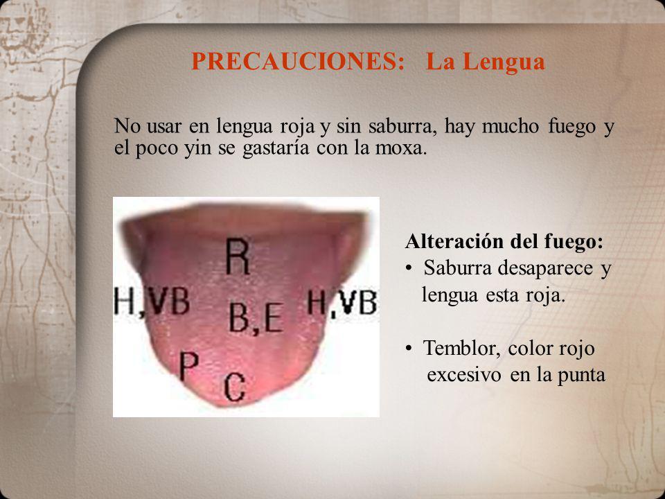 PRECAUCIONES: La Lengua