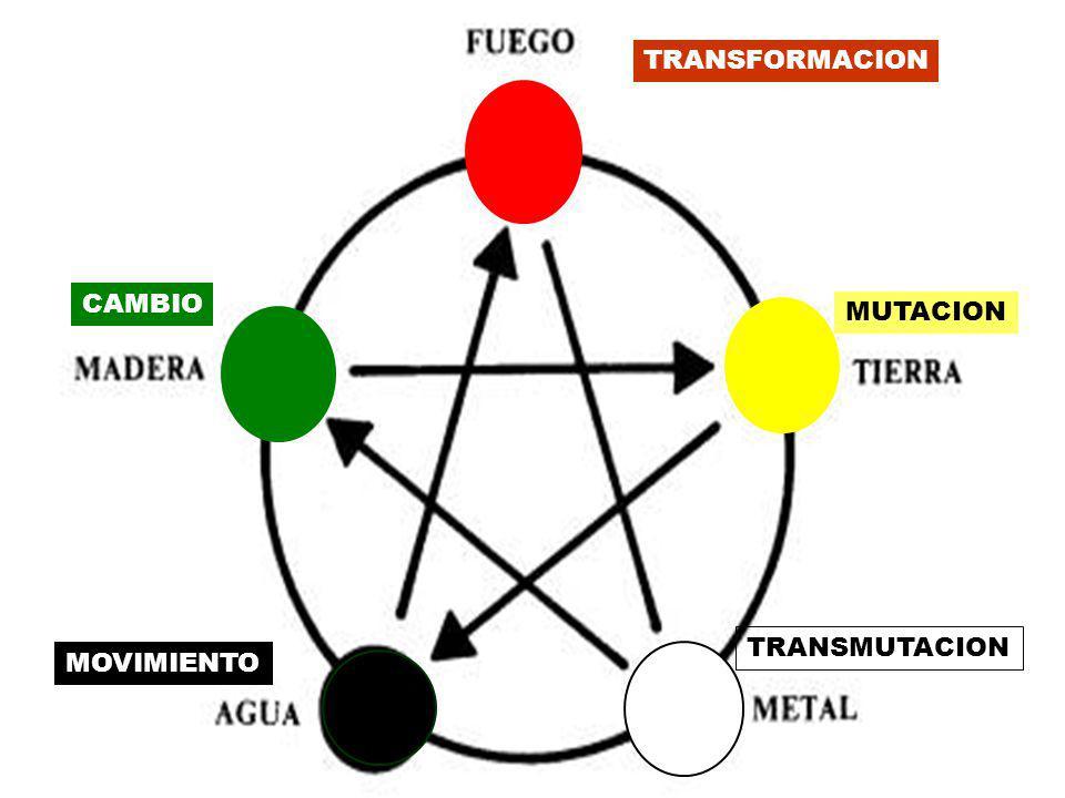 TRANSFORMACION CAMBIO MUTACION TRANSMUTACION MOVIMIENTO