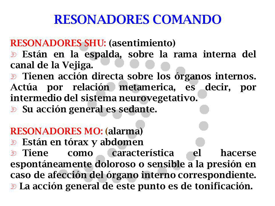 RESONADORES COMANDO RESONADORES SHU: (asentimiento)