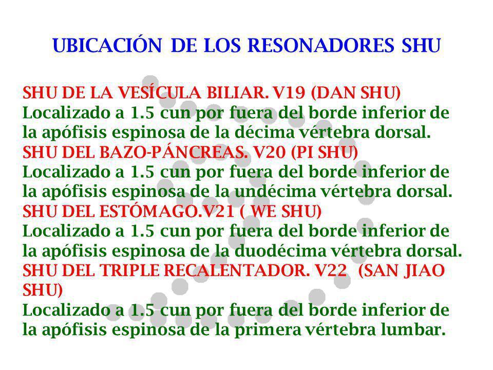 UBICACIÓN DE LOS RESONADORES SHU