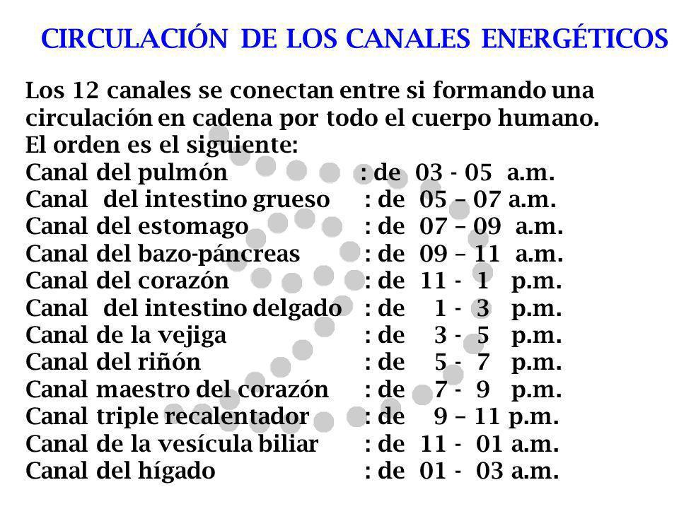 CIRCULACIÓN DE LOS CANALES ENERGÉTICOS