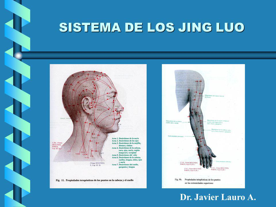 SISTEMA DE LOS JING LUO Dr. Javier Lauro A.