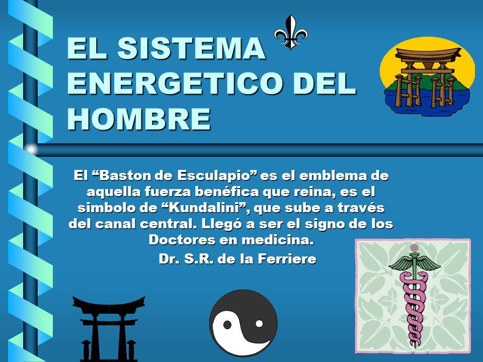 EL SISTEMA ENERGETICO DEL HOMBRE