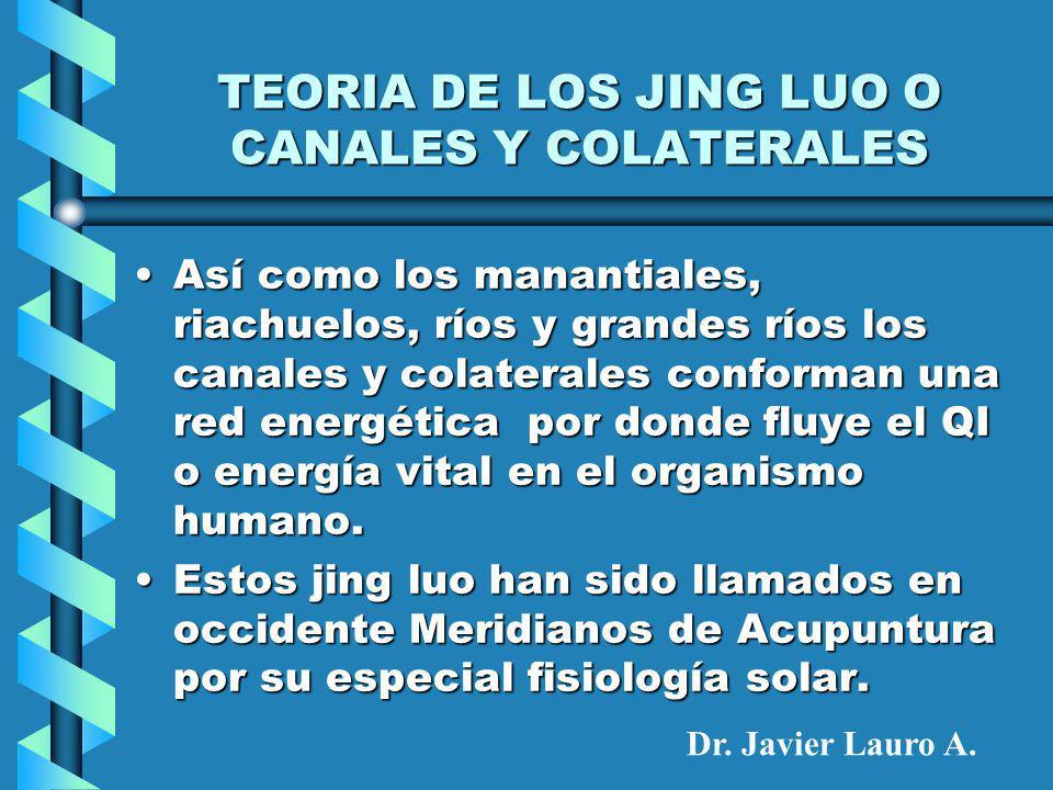 TEORIA DE LOS JING LUO O CANALES Y COLATERALES