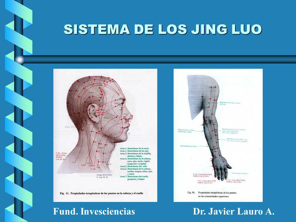 SISTEMA DE LOS JING LUO Fund. Invesciencias Dr. Javier Lauro A.