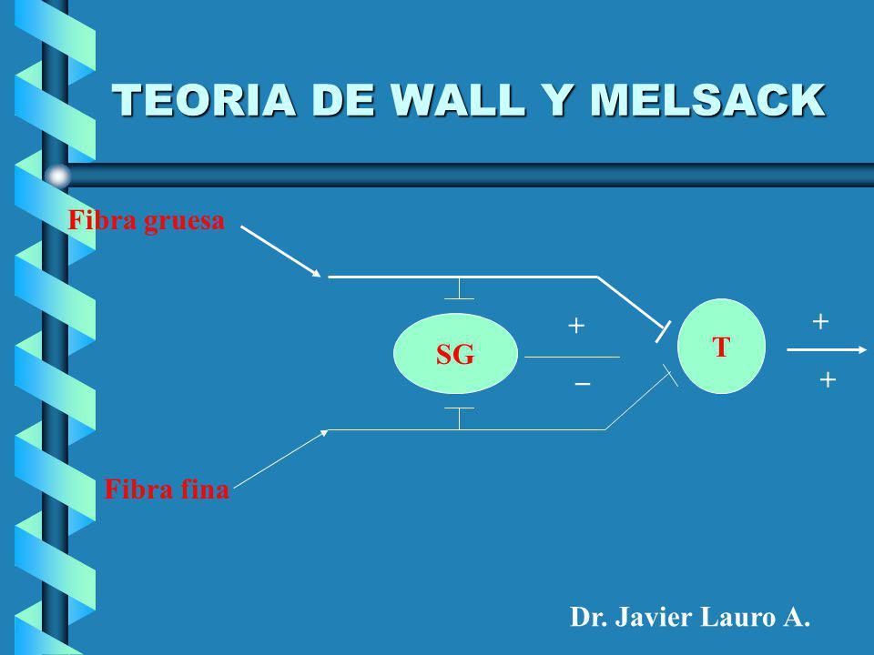 TEORIA DE WALL Y MELSACK