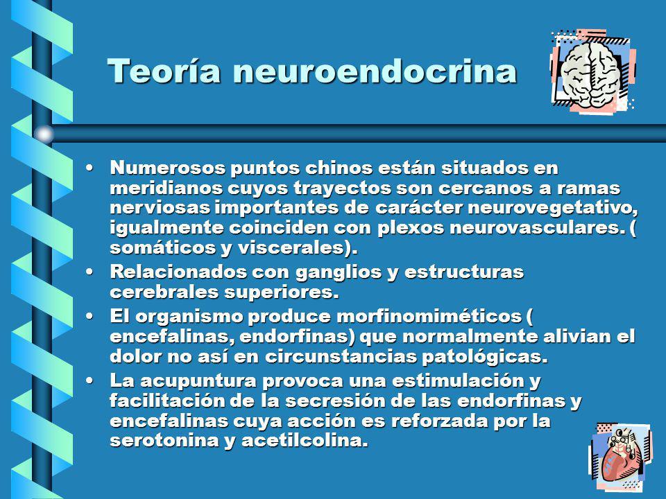 Teoría neuroendocrina