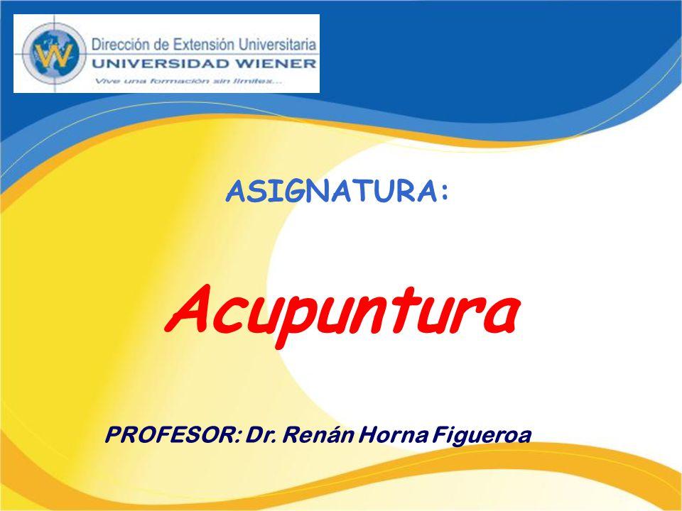 PROFESOR: Dr. Renán Horna Figueroa