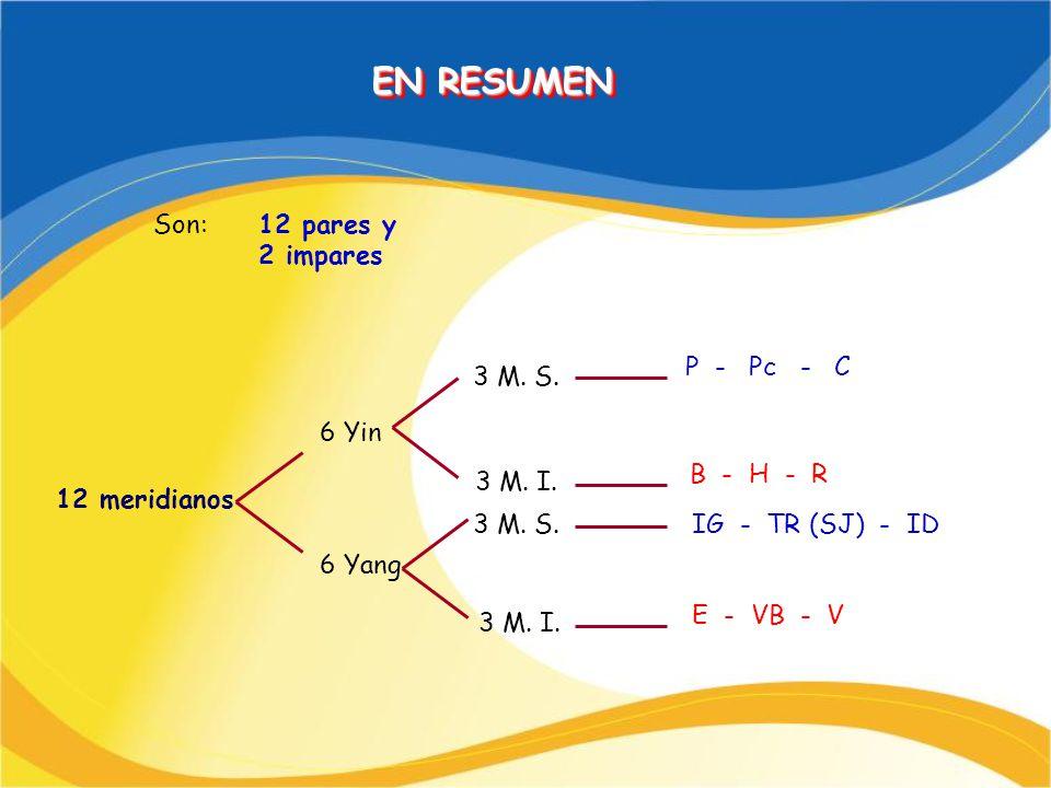 EN RESUMEN Son: 12 pares y 2 impares P - Pc - C 3 M. S. 6 Yin
