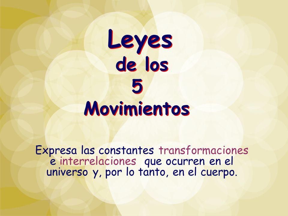 Leyes de los 5 Movimientos