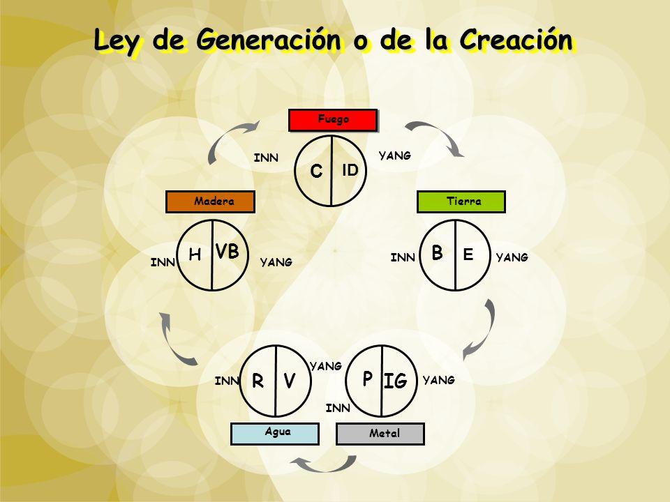 Ley de Generación o de la Creación