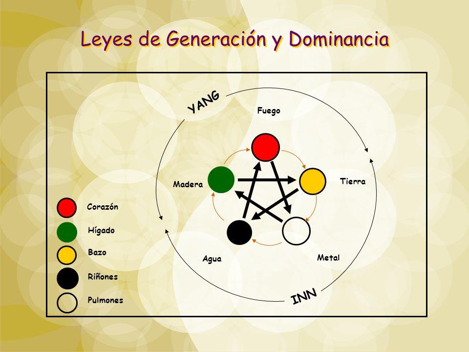 Leyes de Generación y Dominancia