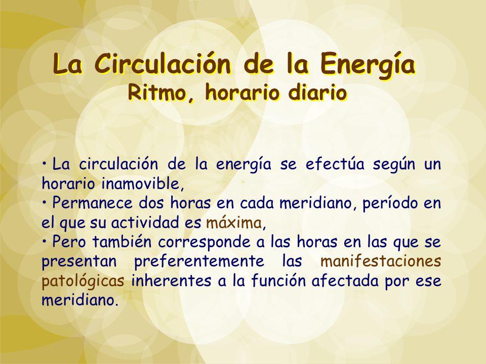 La Circulación de la Energía