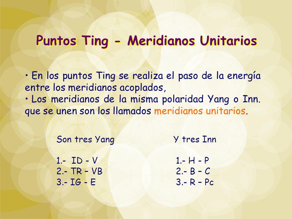 Puntos Ting - Meridianos Unitarios