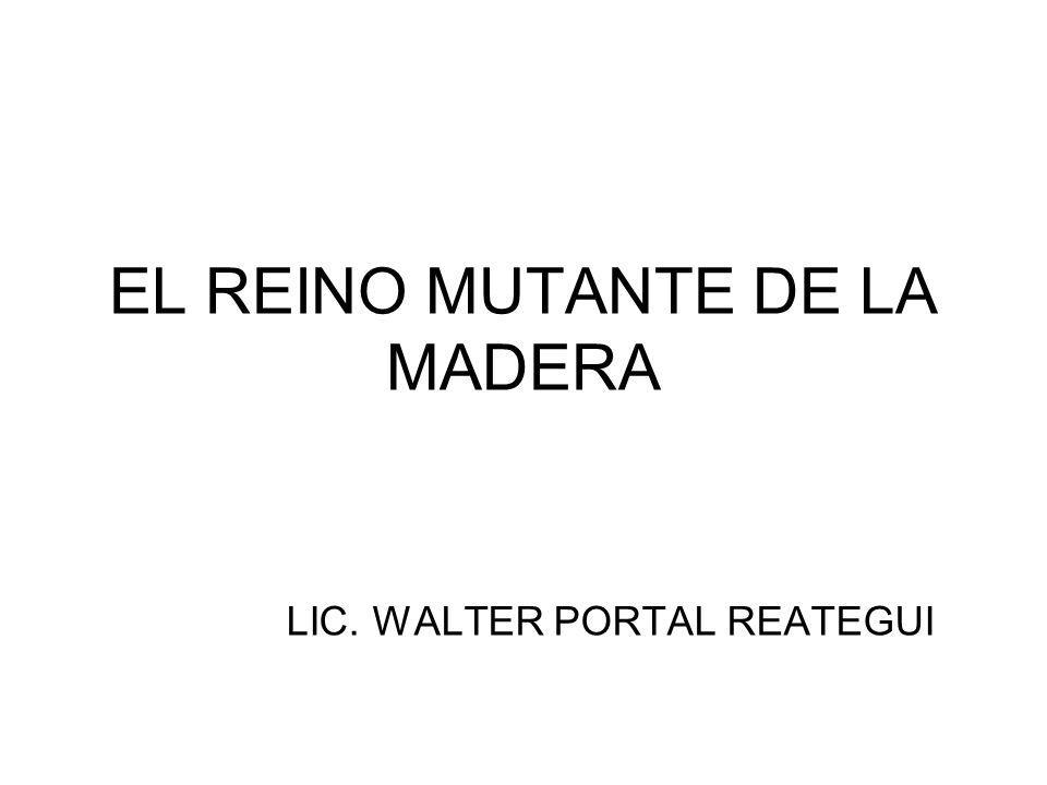 EL REINO MUTANTE DE LA MADERA