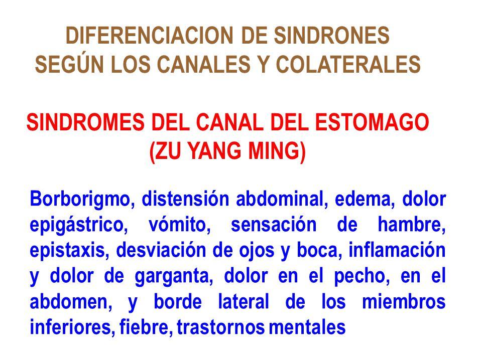 DIFERENCIACION DE SINDRONES SEGÚN LOS CANALES Y COLATERALES