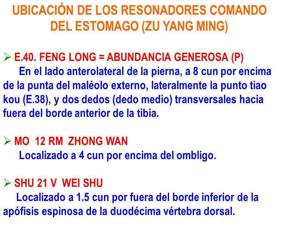 UBICACIÓN DE LOS RESONADORES COMANDO DEL ESTOMAGO (ZU YANG MING)