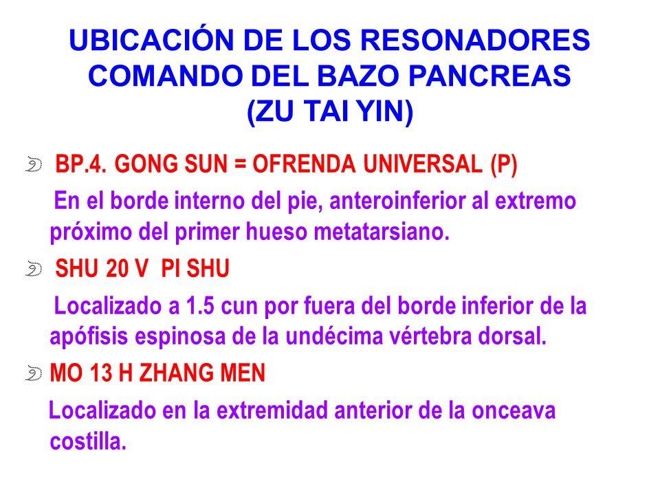 UBICACIÓN DE LOS RESONADORES COMANDO DEL BAZO PANCREAS