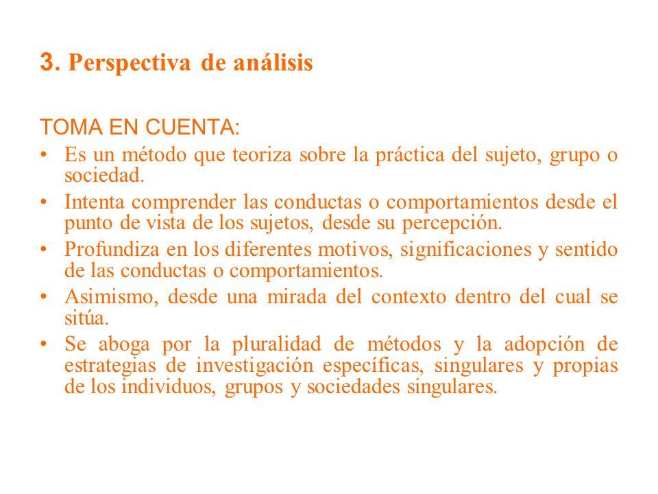3. Perspectiva de análisis