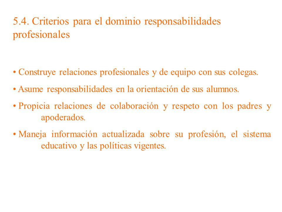 5.4. Criterios para el dominio responsabilidades profesionales