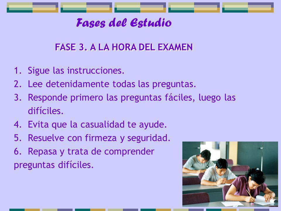 FASE 3. A LA HORA DEL EXAMEN