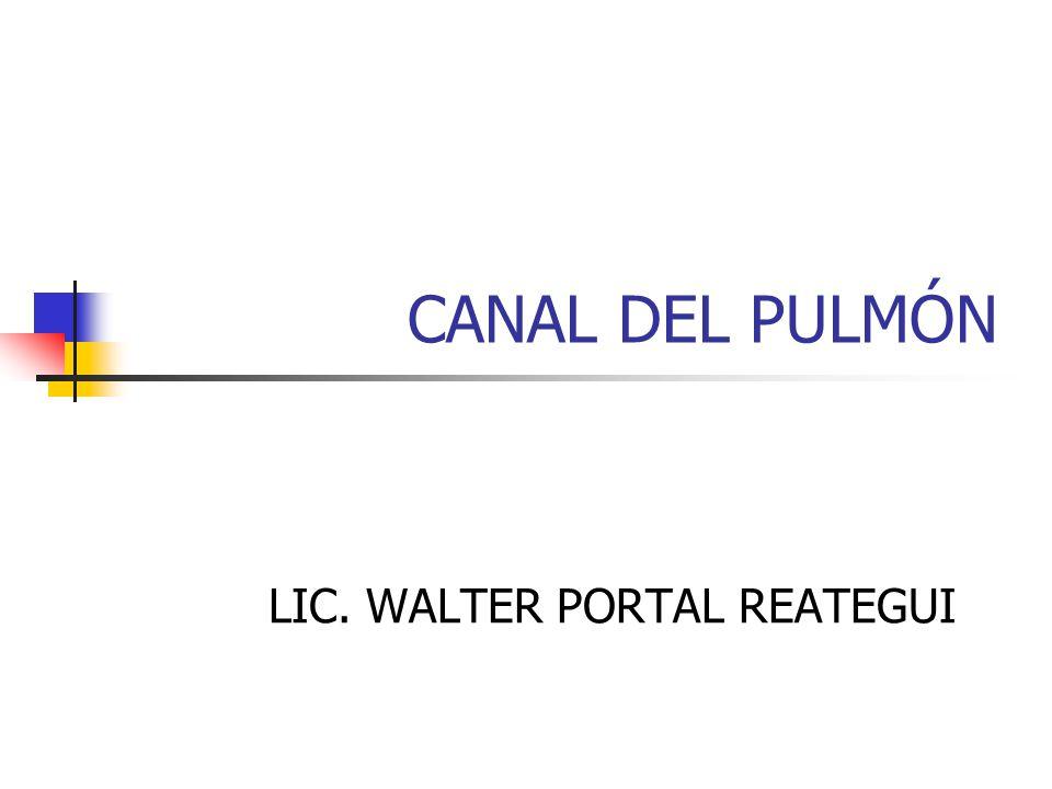 LIC. WALTER PORTAL REATEGUI