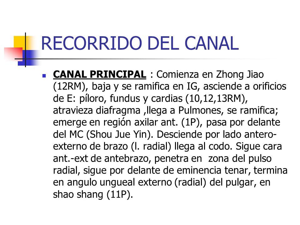 RECORRIDO DEL CANAL
