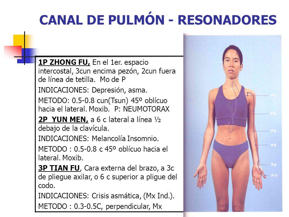 CANAL DE PULMÓN - RESONADORES