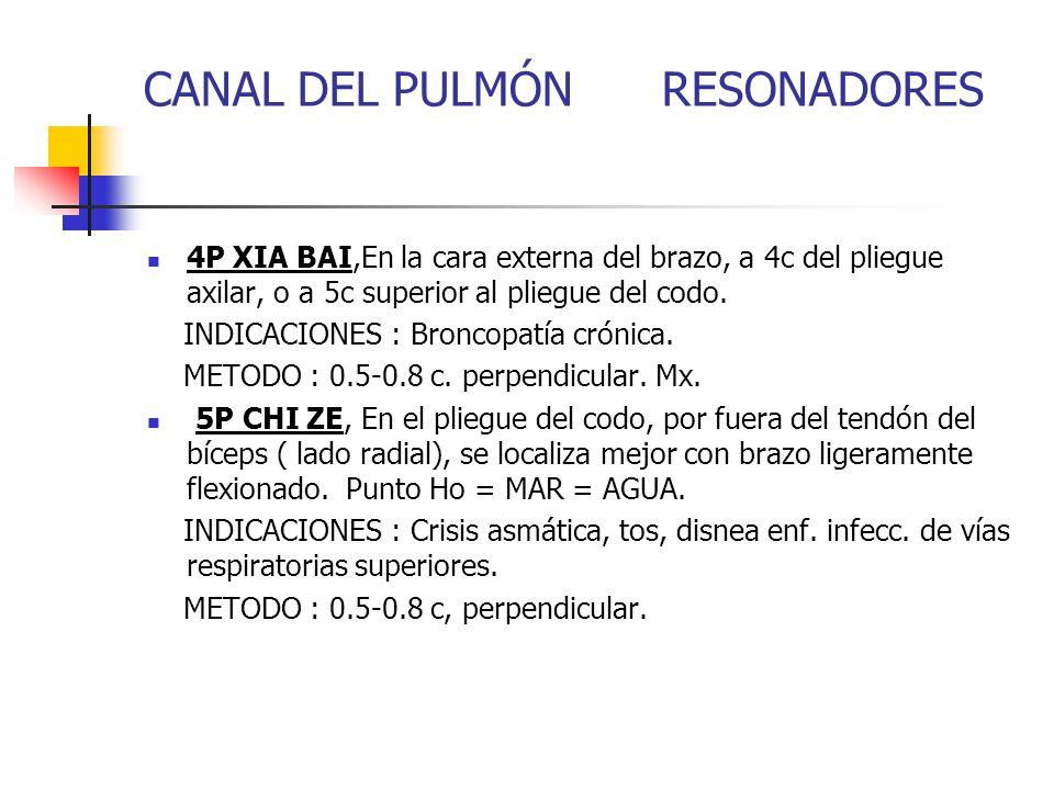 CANAL DEL PULMÓN RESONADORES