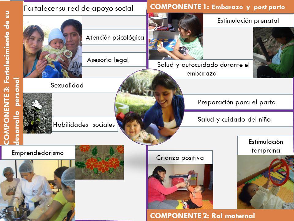 Fortalecer su red de apoyo social COMPONENTE 1: Embarazo y post parto