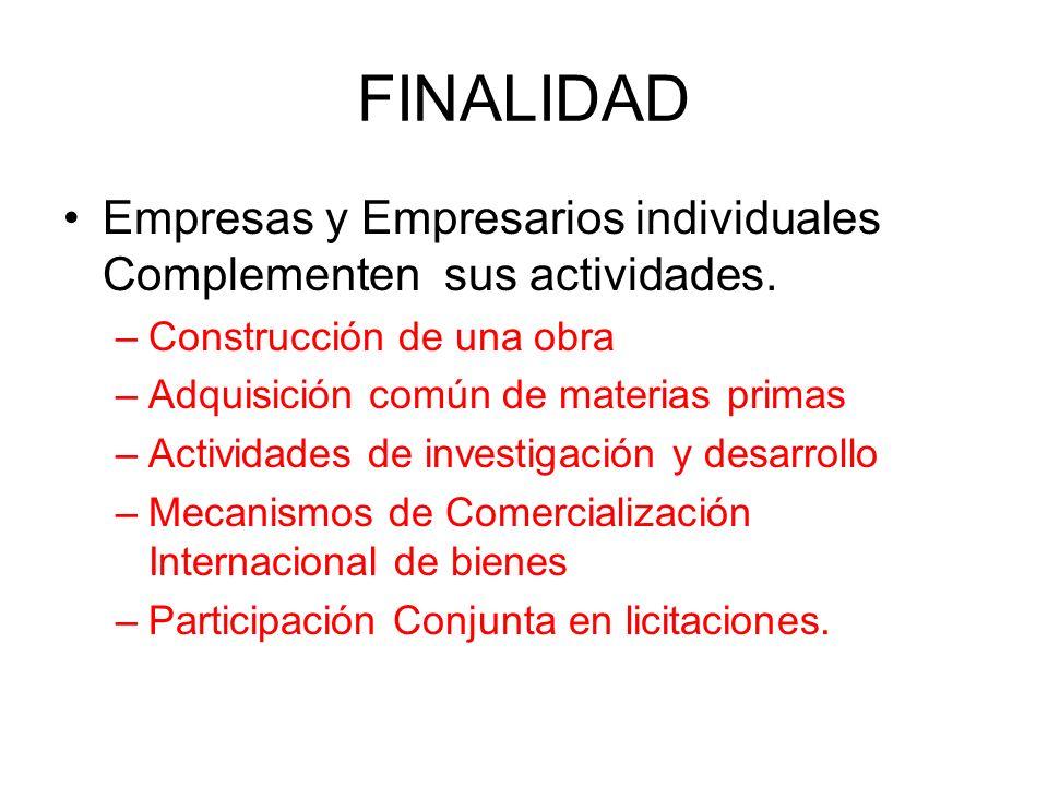 FINALIDAD Empresas y Empresarios individuales Complementen sus actividades. Construcción de una obra.