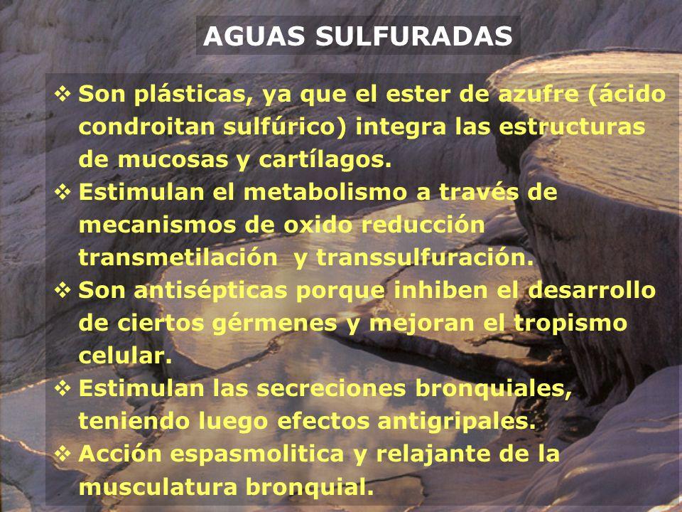AGUAS SULFURADAS Son plásticas, ya que el ester de azufre (ácido condroitan sulfúrico) integra las estructuras de mucosas y cartílagos.