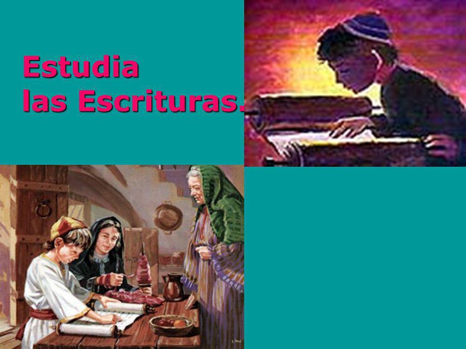 Estudia las Escrituras.