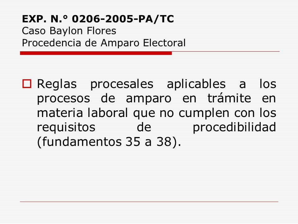 EXP. N.° 0206-2005-PA/TC Caso Baylon Flores Procedencia de Amparo Electoral