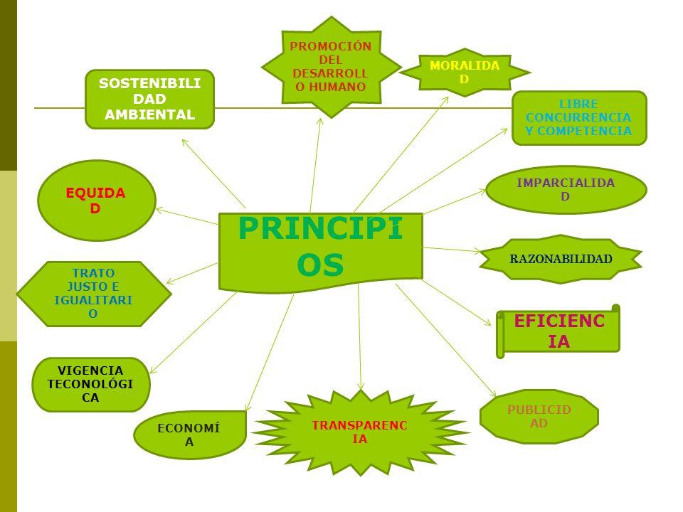 PRINCIPIOS EFICIENCIA SOSTENIBILIDAD AMBIENTAL EQUIDAD