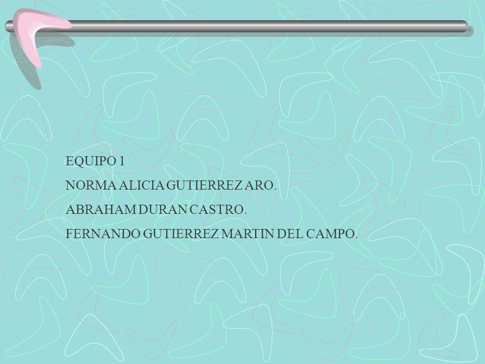 EQUIPO 1 NORMA ALICIA GUTIERREZ ARO. ABRAHAM DURAN CASTRO. FERNANDO GUTIERREZ MARTIN DEL CAMPO.