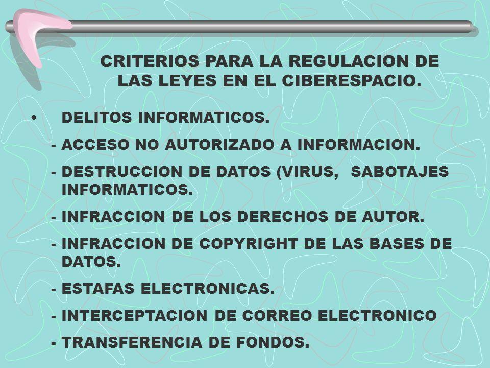 CRITERIOS PARA LA REGULACION DE LAS LEYES EN EL CIBERESPACIO.